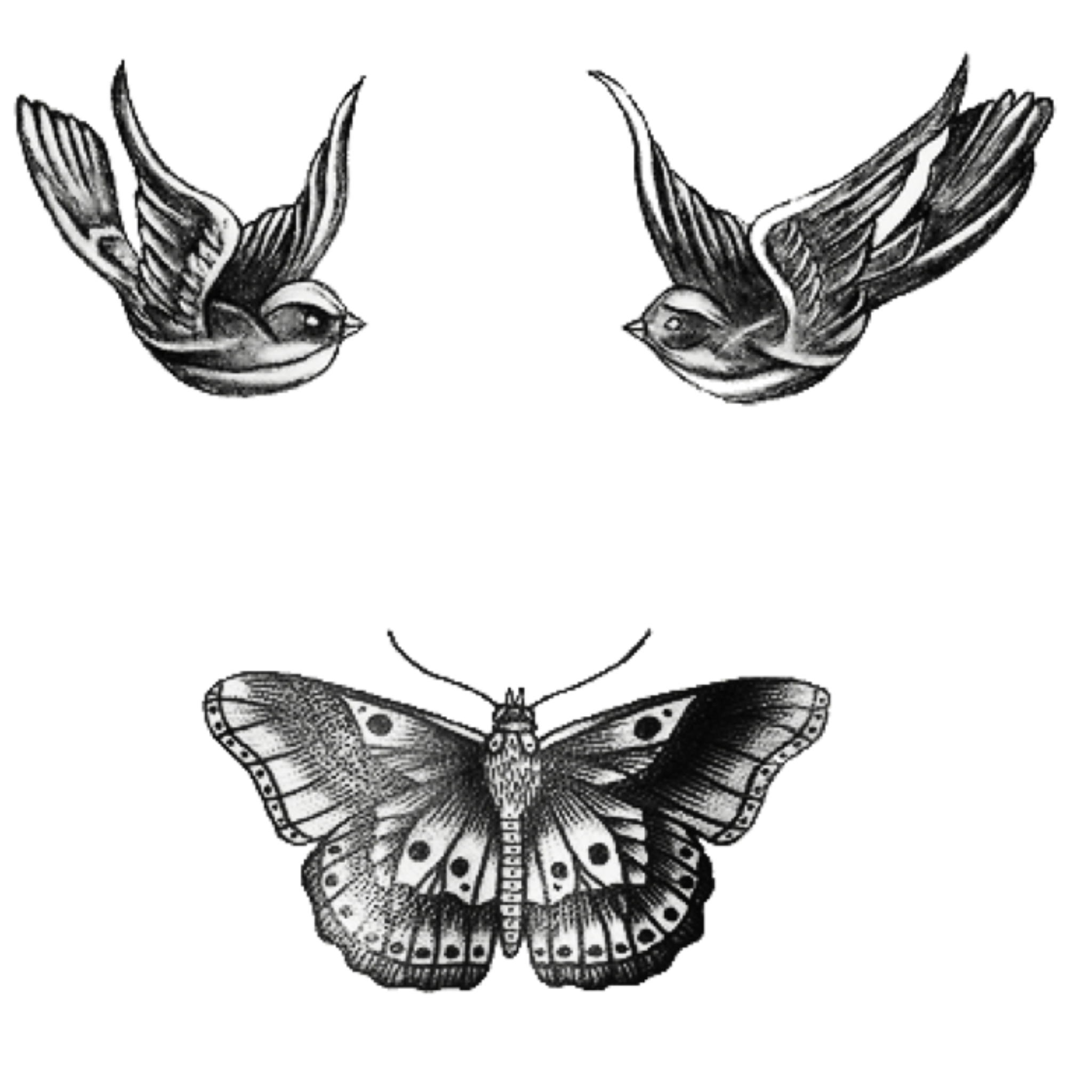 tattoos tatto harrystyles png famous singer tumblr inte...
