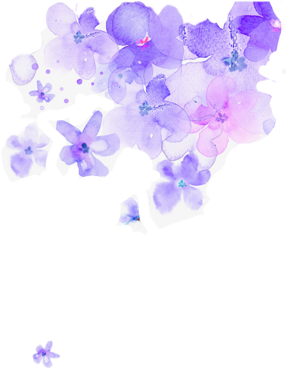 flowers watercolor watercolorflowers purple