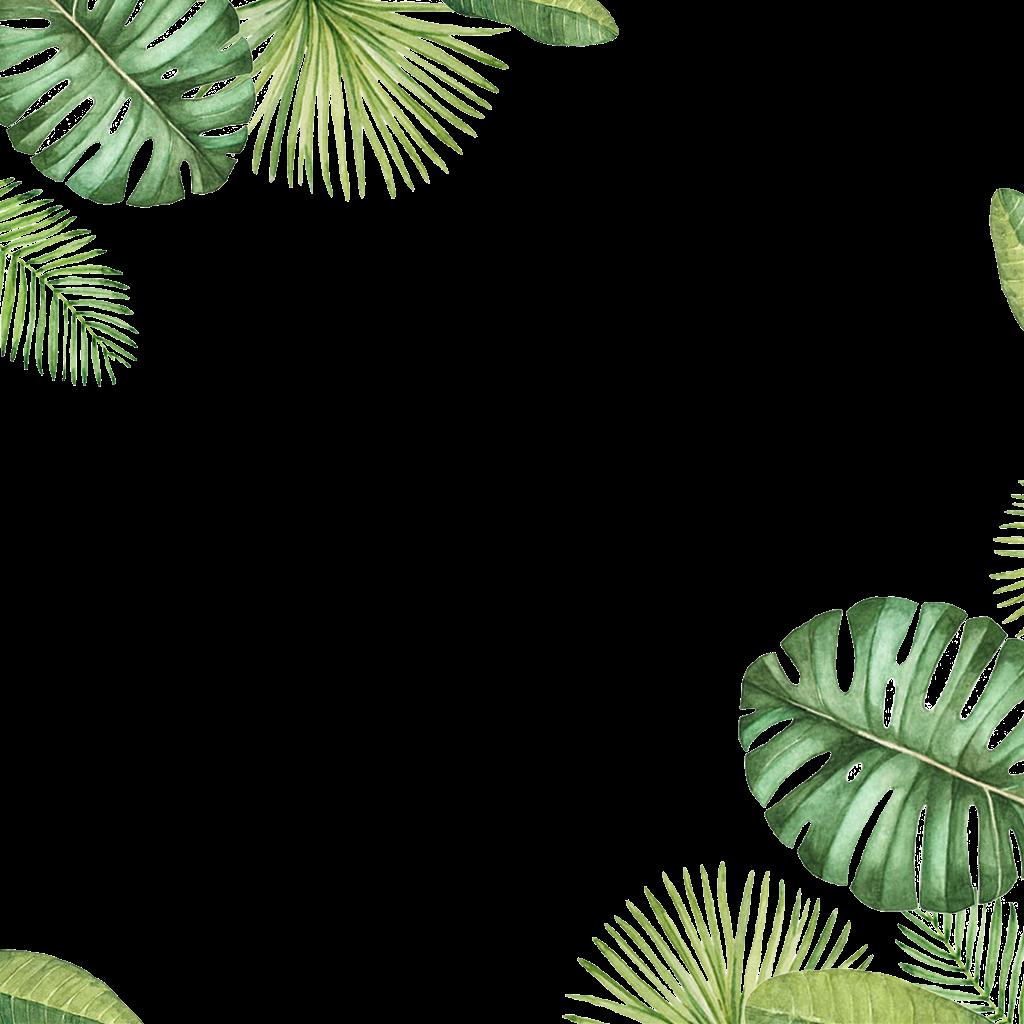 Leaves Leaf Tropical Image Picture Frame Pictureframe