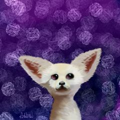 drawnwithpicsart fennecfox art purple copycat