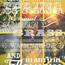 freetoedit springday quotes