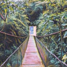 freetoedit forest door art surreal