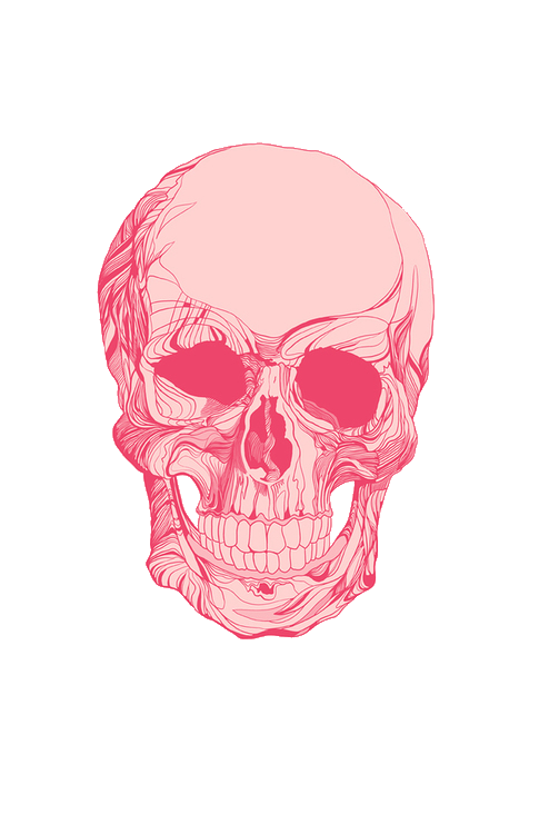 Skull calavera pink cool tumblr freetoedit sign in to save it to your collection voltagebd Image collections