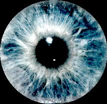 ojo ojos eyes eye blue