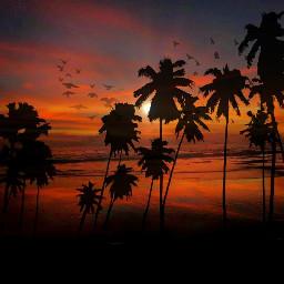 freetoedit beachlover vibrant dslr picsart