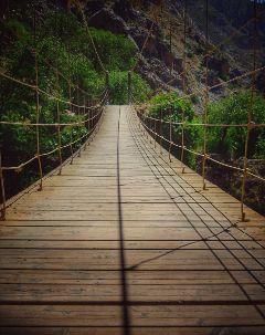 perfectday nature bridge mountain spring