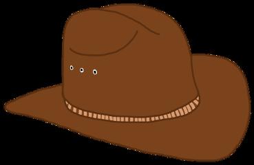 ftestickers hat cowboy cowboyhat