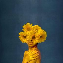interesting nature flower art photography