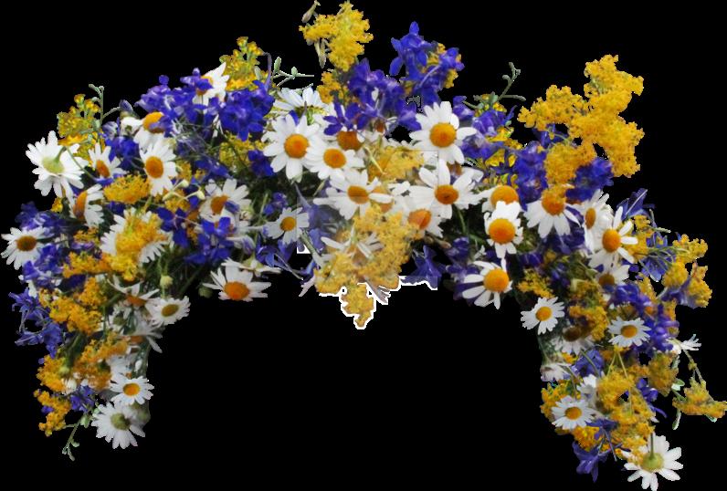 #flowers #crown #flowercrown #wildflowers #daisyflower #daises #facefilter #instagram #pretty #spring #flowerpower #beautiful