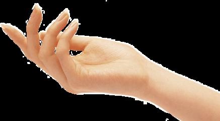 hand freetoedit