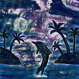 seaside dolphin midnightfilter