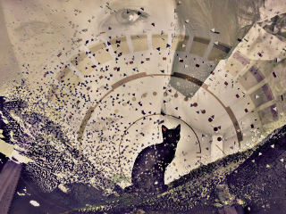 remix cat mountains eyes circles freetoedit