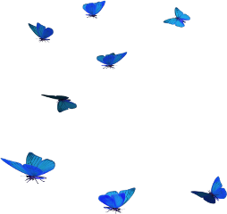butterflies blue freetoedit