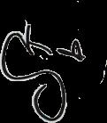 sevillakarol autografokarol karolitziterypi freetoedit