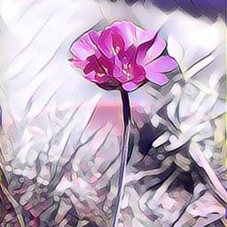 nightcore pink flower beautiful