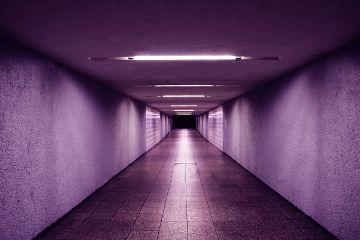 freetoedit purple light room minimal