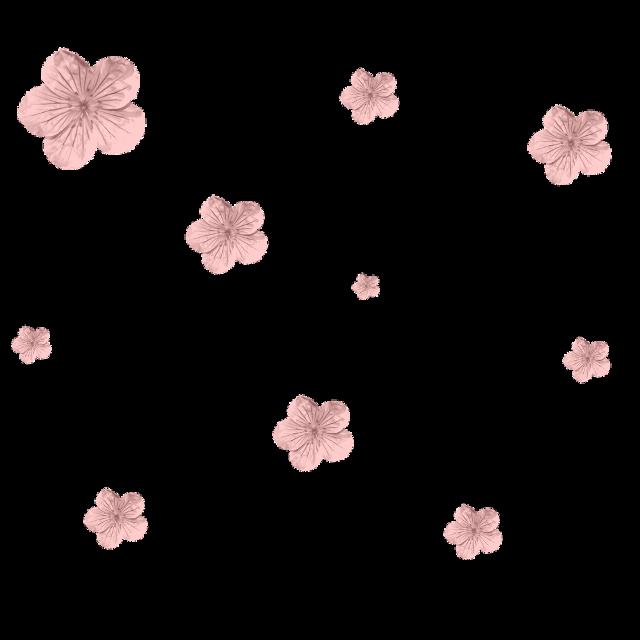 #mask #driedflower #flowers #freetoedit