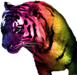 more rainbow tigers freetoedit