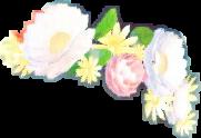 corona de flores freetoedit