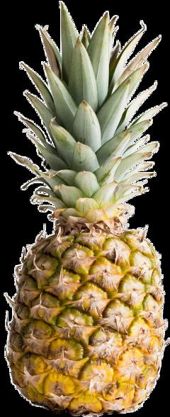 ftestickers pineapple pinapplesticker freetoedit