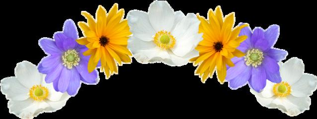 flower flowers flowercrown mahkota freetoedit