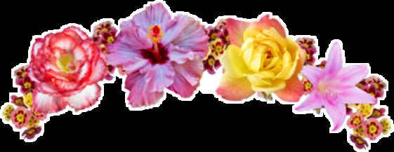 flower flowercrown crown edit template
