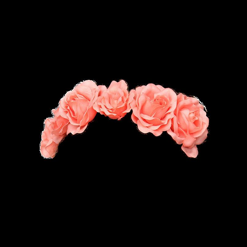Flowers crown flower sticker by emi izmirmasajfo