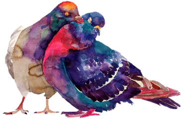 ftstickers bird pigeon colorful freetoedit