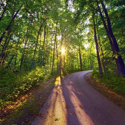 freetoedit nature remixit colorful hike