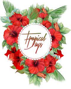 tropicaldays summervibes hibiscus oilpaintingeffect