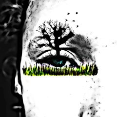 freetoedit art eye tree