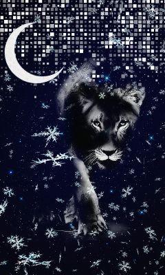 freetoedit lepoard moon snowflakes space
