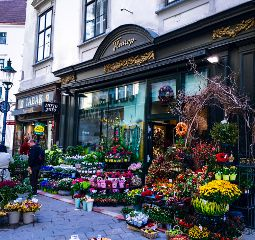 dpcflowershops photography travel architecture colorful