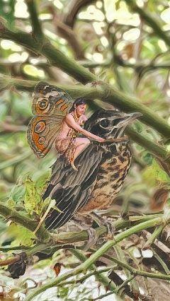 fairy bird nature girl cutegirl