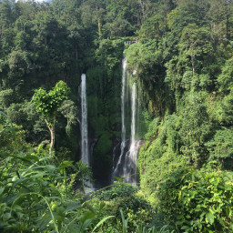 treasure nature waterfall photography forest