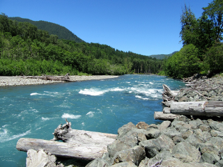 river nature summer freetoedit