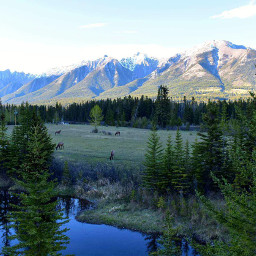 rockymountains canmore alberta canada travel pclandscape