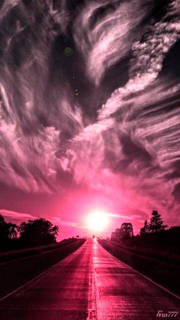 #nature #pink #freetoedit