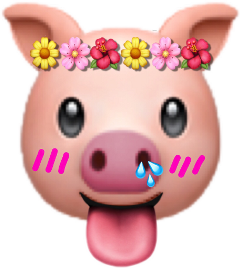 pig pink nice good cute