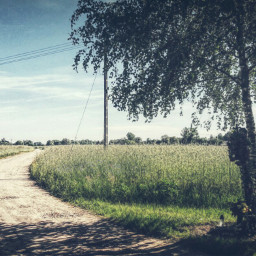 countryside poland hdr landscape summer