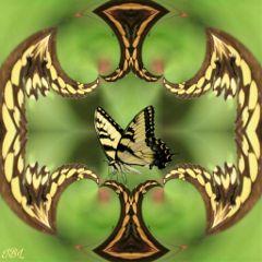 freetoedit remix mirrormaniamonday mirrormania colorful