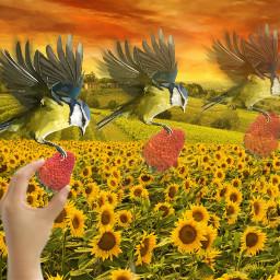 freetoedit strawberryremix remix bird artisticeffect