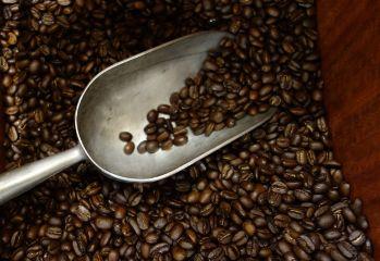 freetoedit rich aromatic coffeebeans coffeeaddict