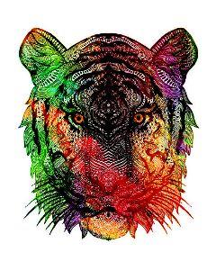 tiger zentagleart zentagleanimal colorfestival hipster