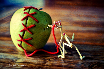 push photography apple matchstick greenfruit freetoedit