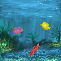 wdpfish colorful nature sea fish