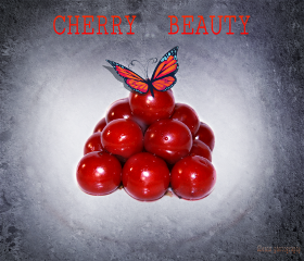 freeto cherry butterfly