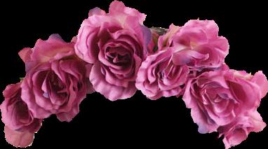 crown beauty cute flowers pink