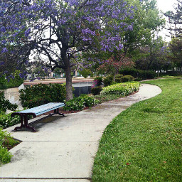 dpcwalkinthepark park walking walkinthepark glendale dpcbenches dpccitymonuments freetoedit