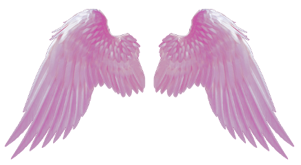 ftestickers freetoedit wings pink magicwings